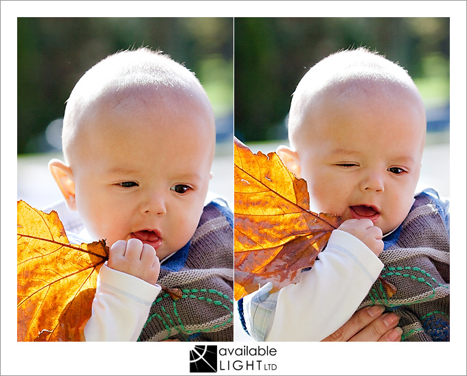 auckland baby photographer