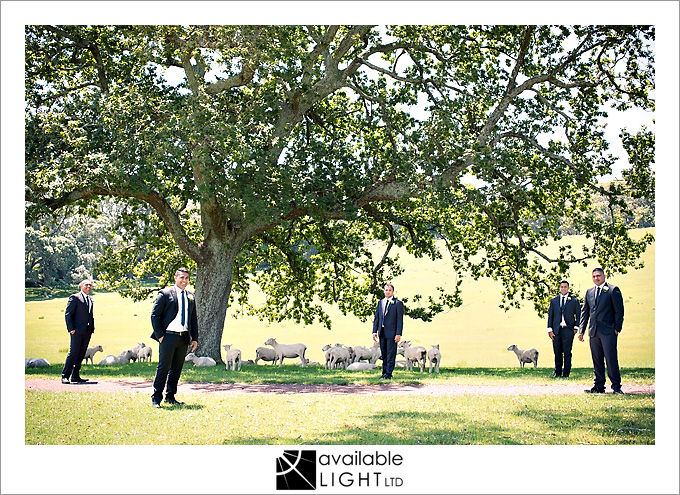 wedding portraits lifestyle