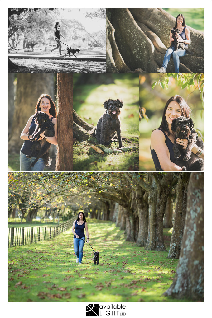 auckland pet portrait photography